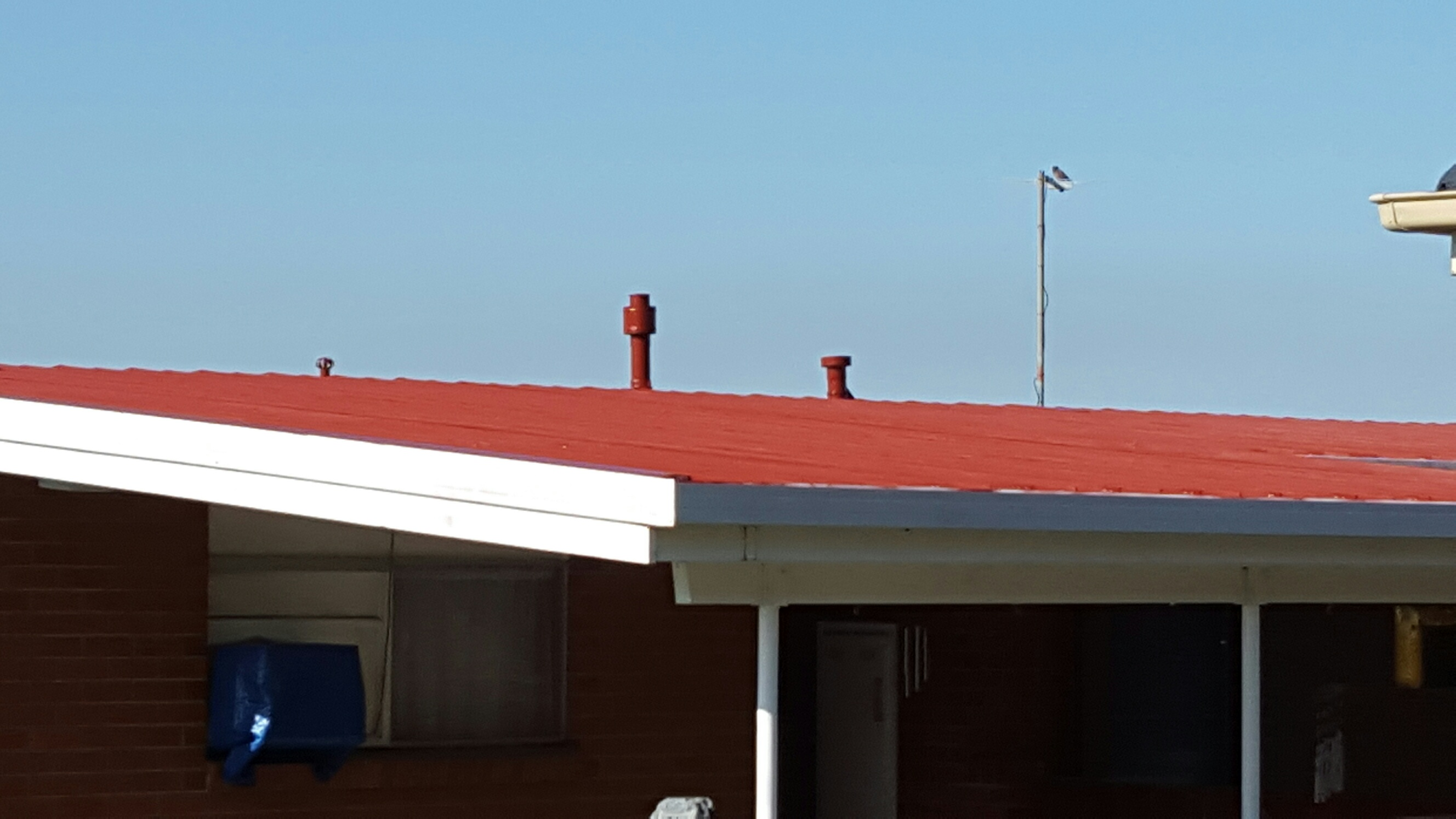 Roof Rebedding